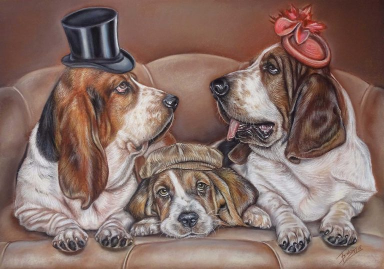 Basset Hound Family Dog Portrait