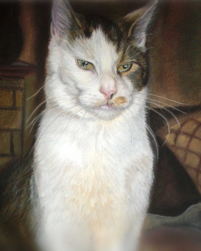 Cat Portrait