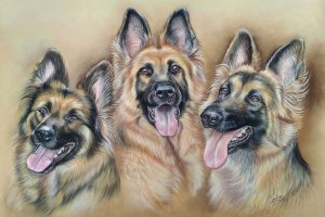 Fisher 400 Pastel Paper - German Shepherds
